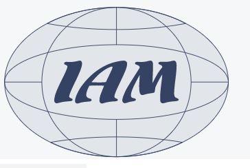 Международная Академия менеджмента